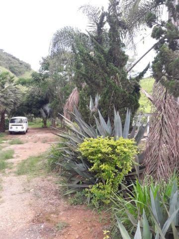 Sítio à venda com 3 dormitórios em Zona rural, Lamim cod:12828 - Foto 8