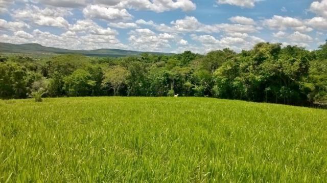 Fazenda em FORMOSA - GO, p/ Pecuária  - Foto 4