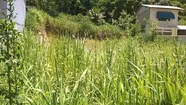 BON- CÓD- 1613 Ótimo terreno no Centro de Bacaxá, Saquarema-RJ - Foto 5