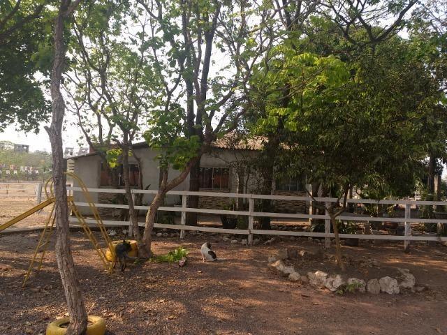 Chácara 2.5 ha, linha 16 cinturão verde - Foto 13