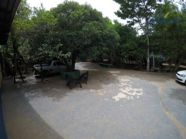 Chácara com 3 dormitórios à venda, 20000 m² por R$ 500.000 - Foto 20