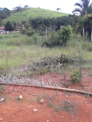 Sítio à venda com 3 dormitórios em Zona rural, Lamim cod:12828 - Foto 13