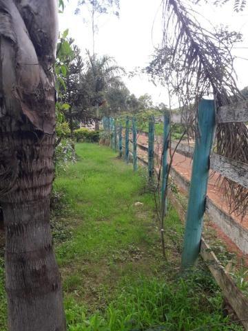 Sítio à venda com 3 dormitórios em Zona rural, Lamim cod:12828 - Foto 7