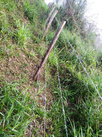 Arrendamento - Fazenda com 82 ha, Una-BA - Foto 11
