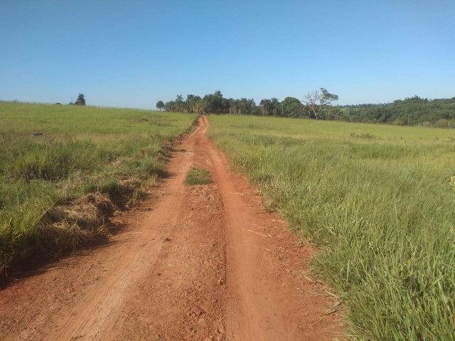 Crédito rural, para compras de chacara, sitio, fazenda, gado e etc - Foto 3