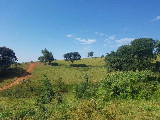 Fazenda/Sítio/Chácara para venda tem 1100000 metros quadrados - Foto 14