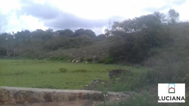 Área em Chã Grande com bastate água (Cód.: 9f2e3e) - Foto 5