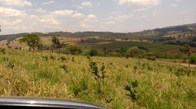 Fazenda 80 ha em Para de Minas/MG - Foto 14