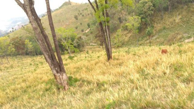Fazenda 80 ha em Para de Minas/MG - Foto 15