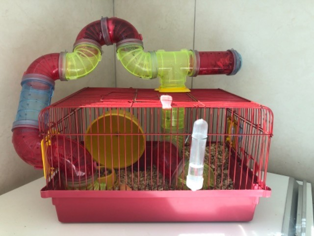 Gaiola Para Hamster Com Tubos De Luxo  + bola de exercícios - Foto 2