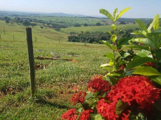 Fazenda/Sítio/Chácara para venda tem 1100000 metros quadrados - Foto 3