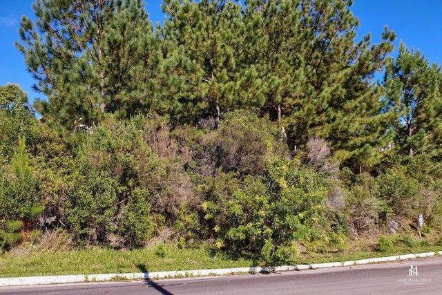 Terreno à venda em Morada da serra, Gramado cod:2317 - Foto 2