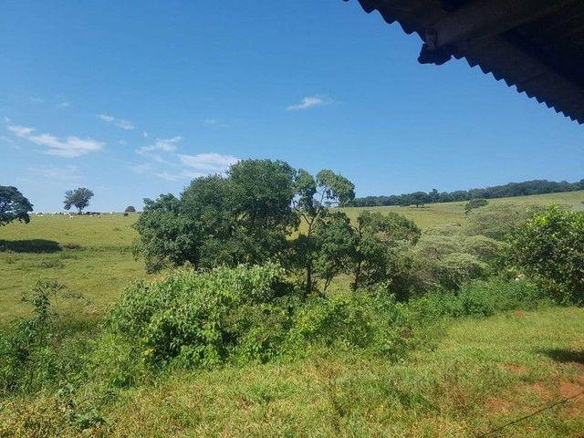 Fazenda/Sítio/Chácara para venda tem 1100000 metros quadrados - Foto 16
