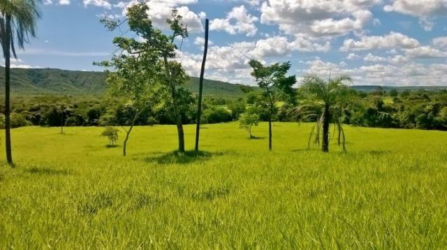 Fazenda em FORMOSA - GO, p/ Pecuária  - Foto 17