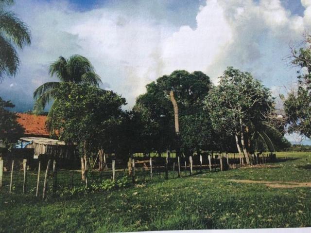FAZENDA A VENDA NO PANTANAL MS (Pecuária) - Foto 5