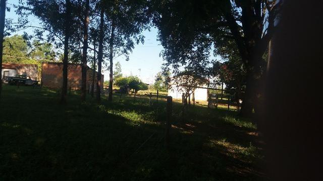 215A/Fazenda de 485 ha com outorga para irrigação às margens do Rio São Francisco - Foto 5