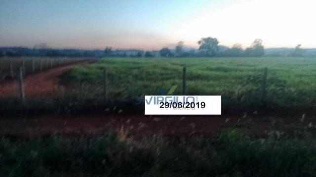 Área à venda, 290400 m² por R$ 1.200.000,00 - Zona Rural - Nazario/GO - Foto 6
