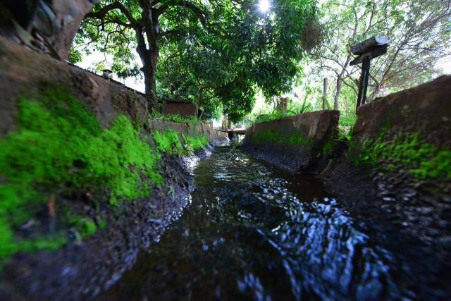 Chácara 1,5 alqueires município Morrinhos - Foto 17