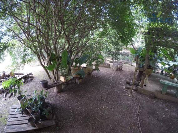 Chácara com 3 dormitórios à venda, 20000 m² por R$ 500.000 - Foto 5