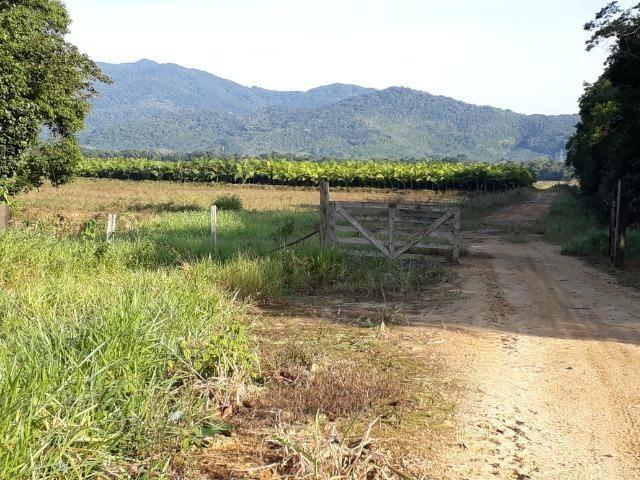 Fazenda Linda para Plantio de Arroz, Aceita parte Parcelado - Foto 13