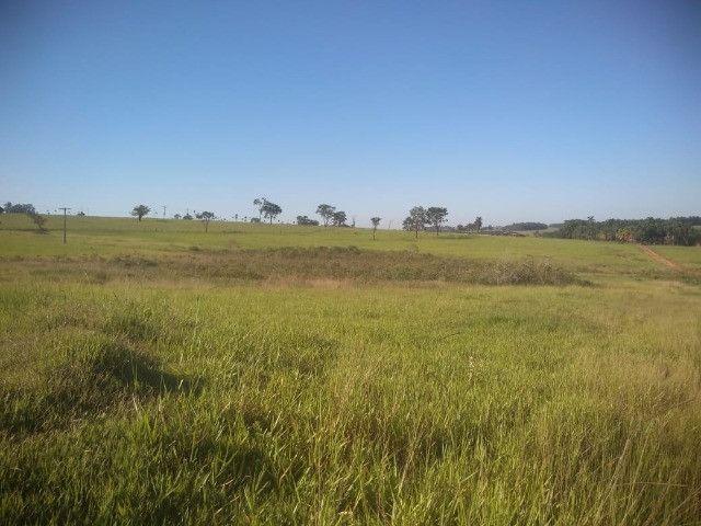 Crédito rural, para compras de chacara, sitio, fazenda, gado e etc - Foto 7