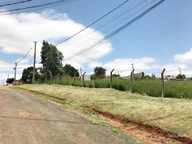 Terreno à venda com 2 dormitórios em Shangrila, Ponta grossa cod:854 - Foto 3