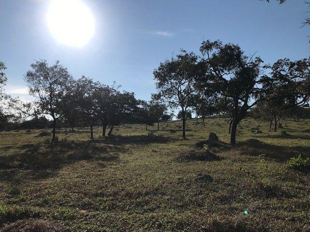 Fazenda/Sítio/Chácara para venda possui * metros quadrados - Foto 2