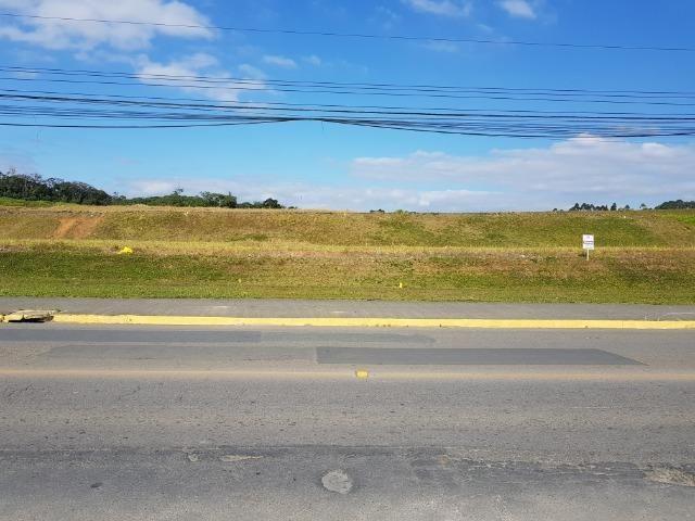 Terrenos comerciais de frente para a rua Santa Catarina no bairro Floresta