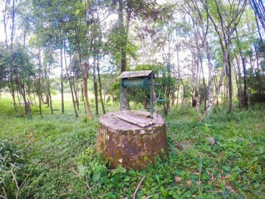 Chácara à venda em Pinheiro torto, Passo fundo cod:11207 - Foto 12