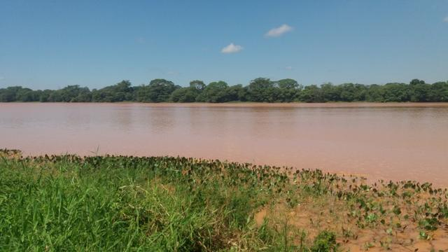 215A/Fazenda de 485 ha com outorga para irrigação às margens do Rio São Francisco - Foto 8