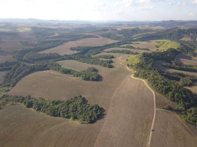 Vendo fazenda 350 alqueires em arapoti-pr - Foto 10