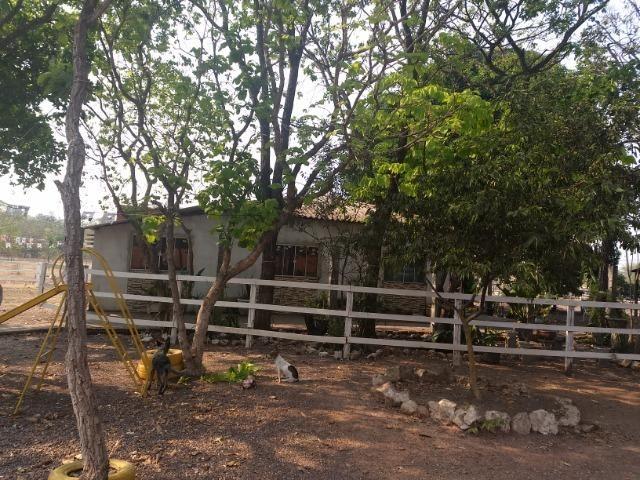 Chácara 2.5 ha, linha 16 cinturão verde - Foto 18
