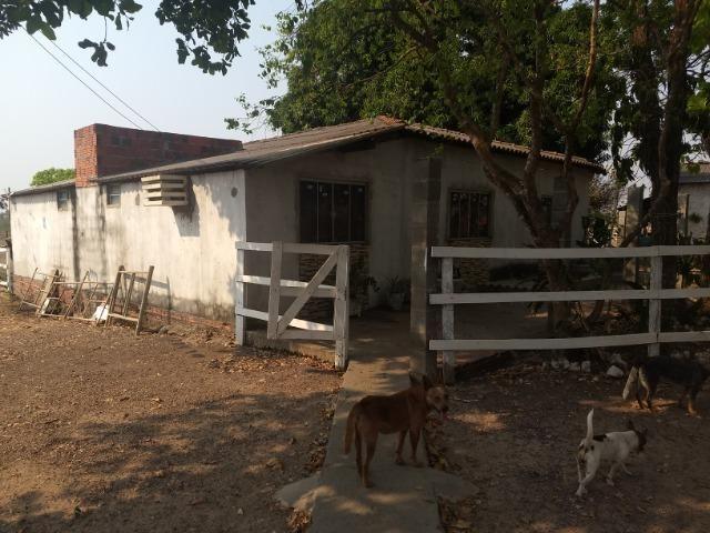 Chácara 2.5 ha, linha 16 cinturão verde - Foto 9