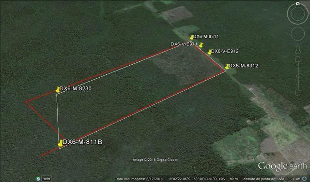 Vendo área de fazenda na Br 319 AM próximo a Porto Velho/Ro