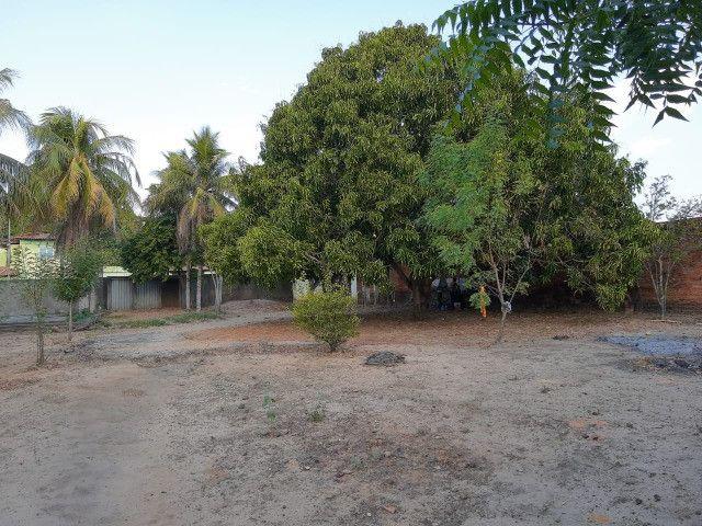 Sitio em Codó-Ma - Foto 10