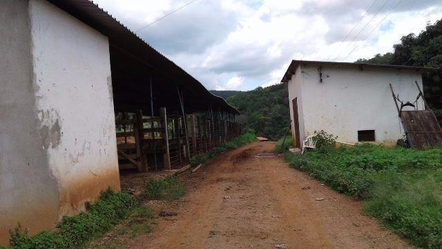 Fazenda 80 Ha Pitangui - Foto 7