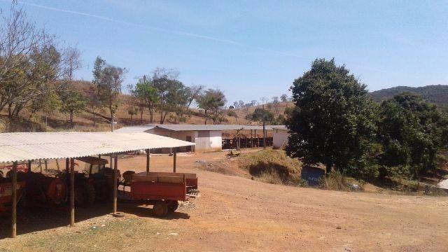 Fazenda 80 Ha Pitangui - Foto 6