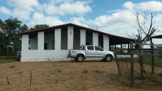 Fazenda Fernando Pedrosa, 489 Hectares, Escriturada, 7km Rio Pajeú, Açude, Casa Sede - Foto 3
