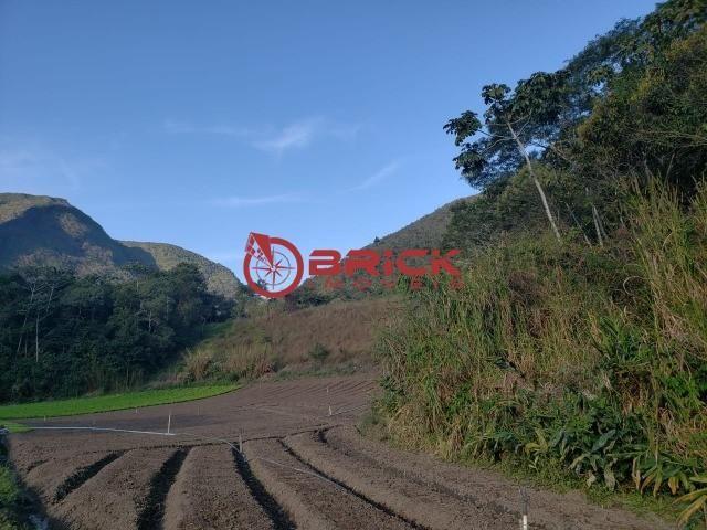 Maravilhosa fazenda com excelente potencial comercial em albuquerque. - Foto 17