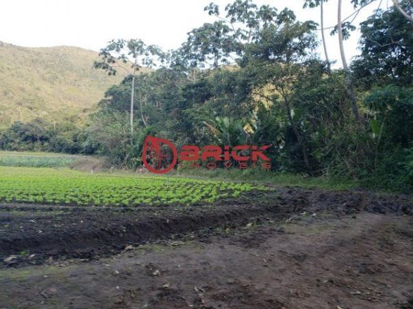Maravilhosa fazenda com excelente potencial comercial em albuquerque. - Foto 10