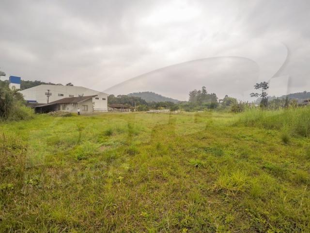 Terreno com aproximadamente 2.500 m², no bairro badenfurt . - Foto 7