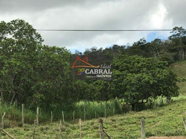 Fazenda - Fazenda a Venda no bairro Catu - Catu, BA - Foto 8