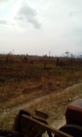 Vendo área de fazenda na Br 319 AM próximo a Porto Velho/Ro - Foto 3
