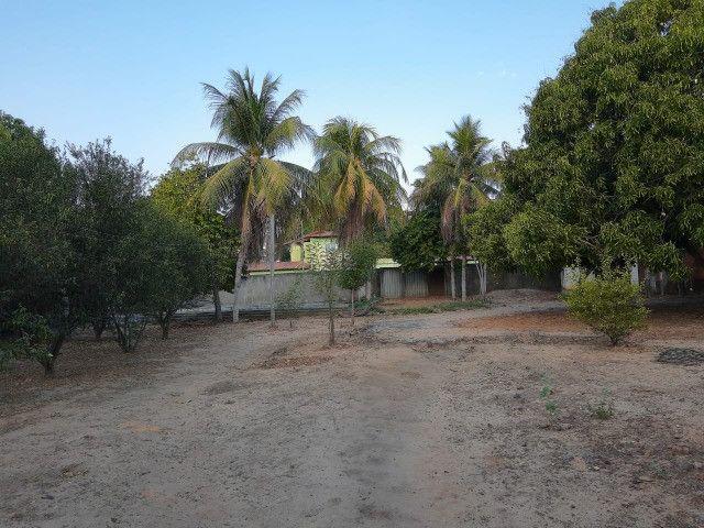 Sitio em Codó-Ma - Foto 5