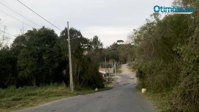 Área comercial à venda, itália, são josé dos pinhais - ar0003. - Foto 3