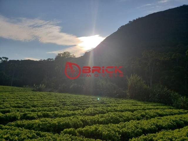 Maravilhosa fazenda com excelente potencial comercial em albuquerque. - Foto 20