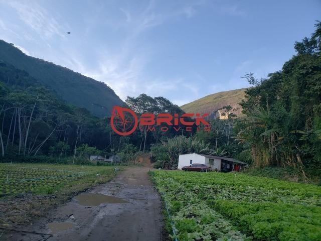 Maravilhosa fazenda com excelente potencial comercial em albuquerque. - Foto 15