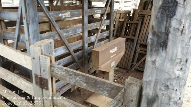 Fazenda em Porangatu!! - Foto 9