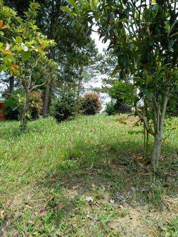 Chácara Linda na Fazenda Rio Grande PR - Foto 12