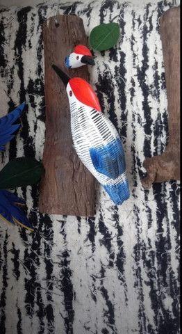 Pica-pau, arara e tucano no tronco - Foto 3